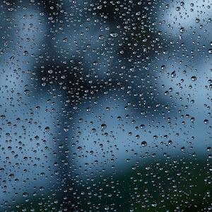 First Rain Oct 22 2015 RS.jpg