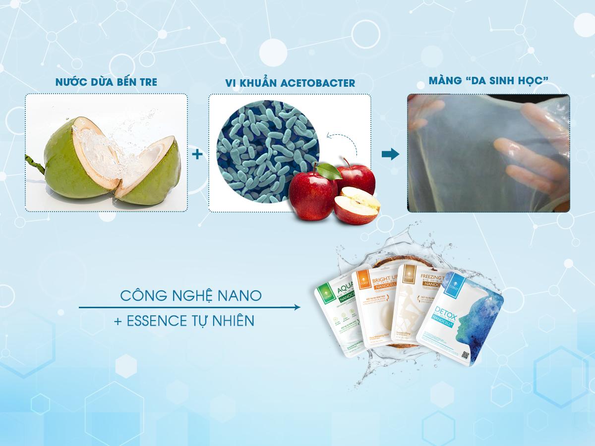 Công nghệ lên men nước dừa để tạo thành mặt nạ sinh học Coko