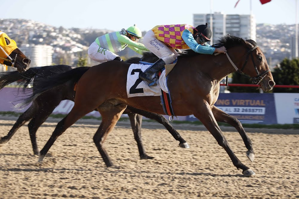 Gran Boran (Rock of Gibraltar) conquistó Handicap (1100m-Arena-VSC).