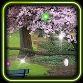 Sakura Nice Live Wallpaper