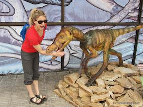 Photo: Raptor attack at the Darwin Museum