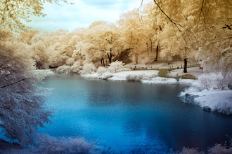 Photo: For download or prints: http://www.beckermanphoto.com/central-park-lake-ir4-color.html