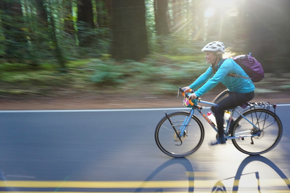 Riding is a little faster without all of our gear - Avenue of the Giants, Humboldt Redwoods State Park, California