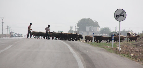 Photo: Day 142 - Herders Crossing the Road