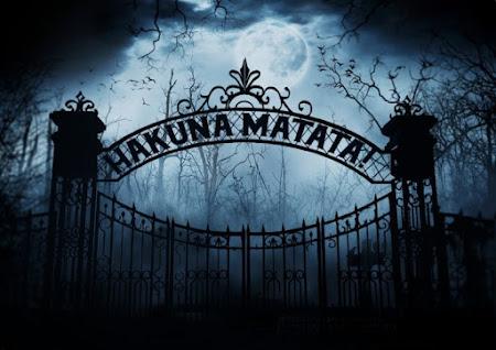 Hakuna Matata. Van slag. Geslagen. Geslaagd.