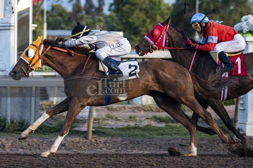 Decide Tu (Don Cavallo) se queda con Handicap (1000m-Arena-CHS).