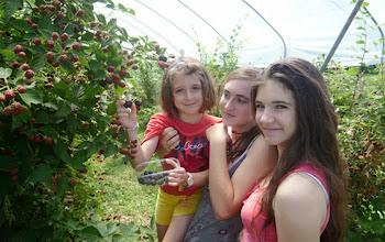 Photo: Assaggiamo e raccogliamo i frutti di basco