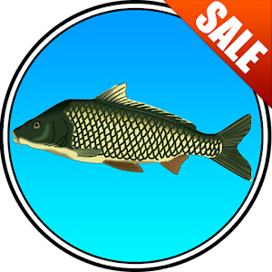 True Fishing (key) for PC and MAC