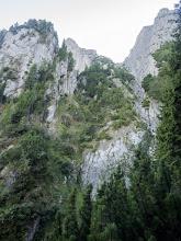 Photo: Valea Coştilei