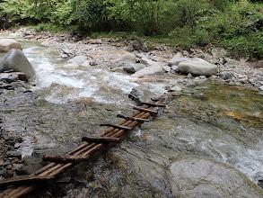 濡れた丸太橋
