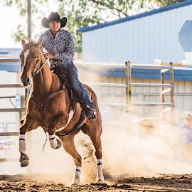 The Take Off by Sarah Sullivan - Sports & Fitness Other Sports ( sun glare, barrel racing, horses, dust, dalby, sarah sullivan photography )