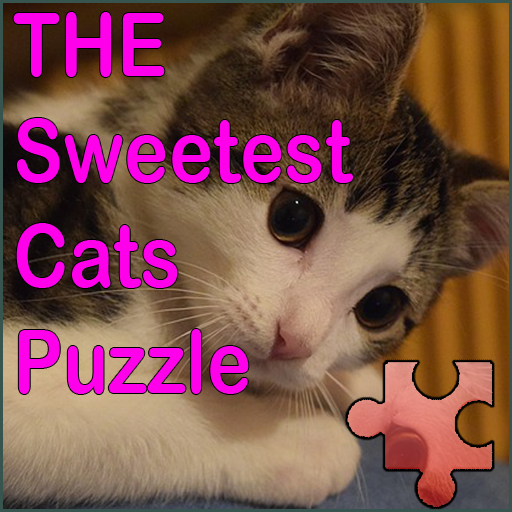 The Sweetest Cats Puzzle- screenshot