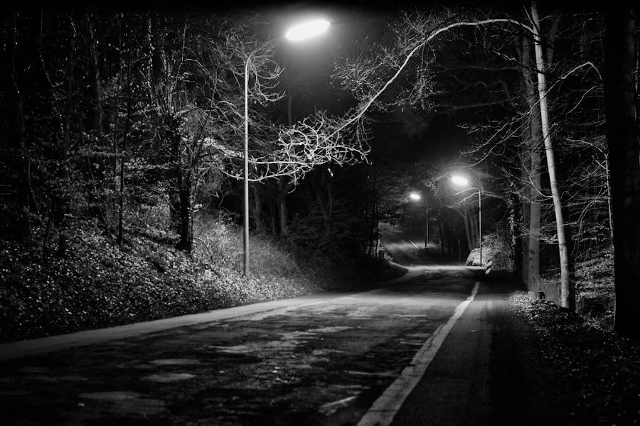 Film noir by Ani Desu - City,  Street & Park  Neighborhoods ( vordere heide, trier,  )