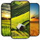 Rice Field Wallpapers APK