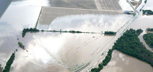 Meeting to discuss recent damage from weather to crops slated for Rowher