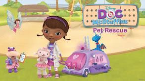 Doc McStuffins: Pet Rescue thumbnail