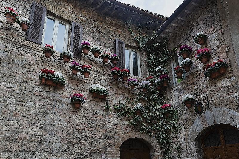 Angolino fiorito di Giorgiopaggetti