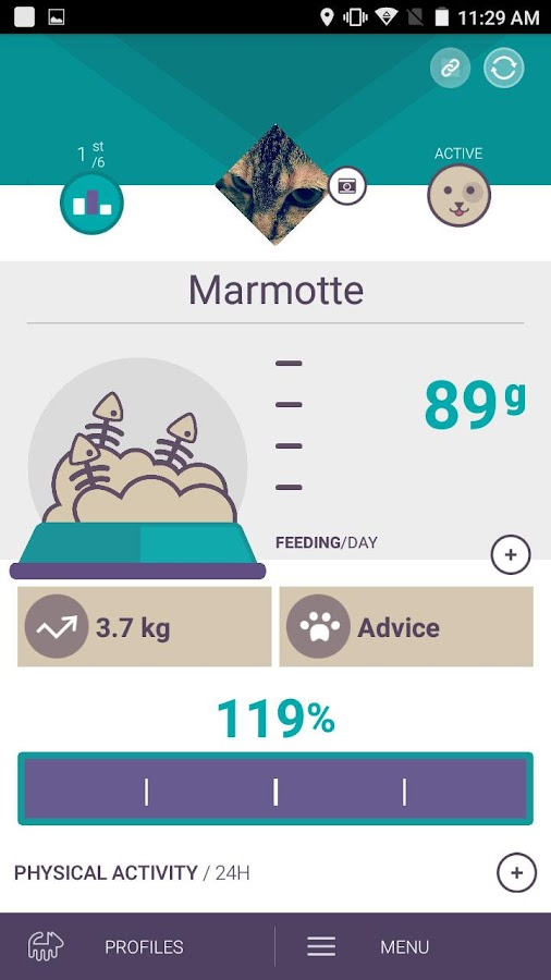 Canhe-Fit, New Pet Tech- screenshot