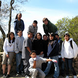 Youth Councils 2008