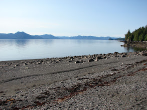 Photo: The beach at Point Higgins looking north up Behm Canal.