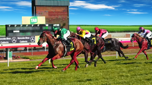 Horse Racing  : Derby Horse Racing game filehippodl screenshot 3