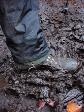 Photo: The first two miles (and the last two) of the trail to Mount Marcy was a sloppy, muddy mess. Photo by Tommy Bell.