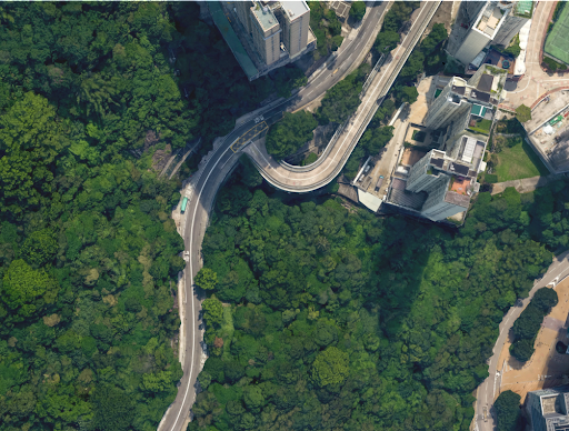 Aerial photo of a road curving through a city block on the right and dense trees on the left.