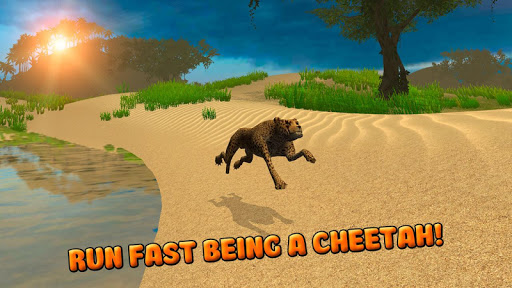 Cheetah Survival Simulator 3D