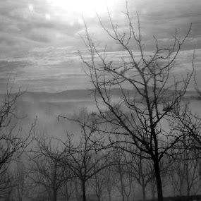 Black and white landscape 3 by Gordana Djokic - Landscapes Mountains & Hills ( hills, sky, nature, black and white, landscape, b and w, b&w, monotone, mono-tone )