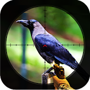 Wild Crow Sniper Hunting : Birds Hunters Challenge