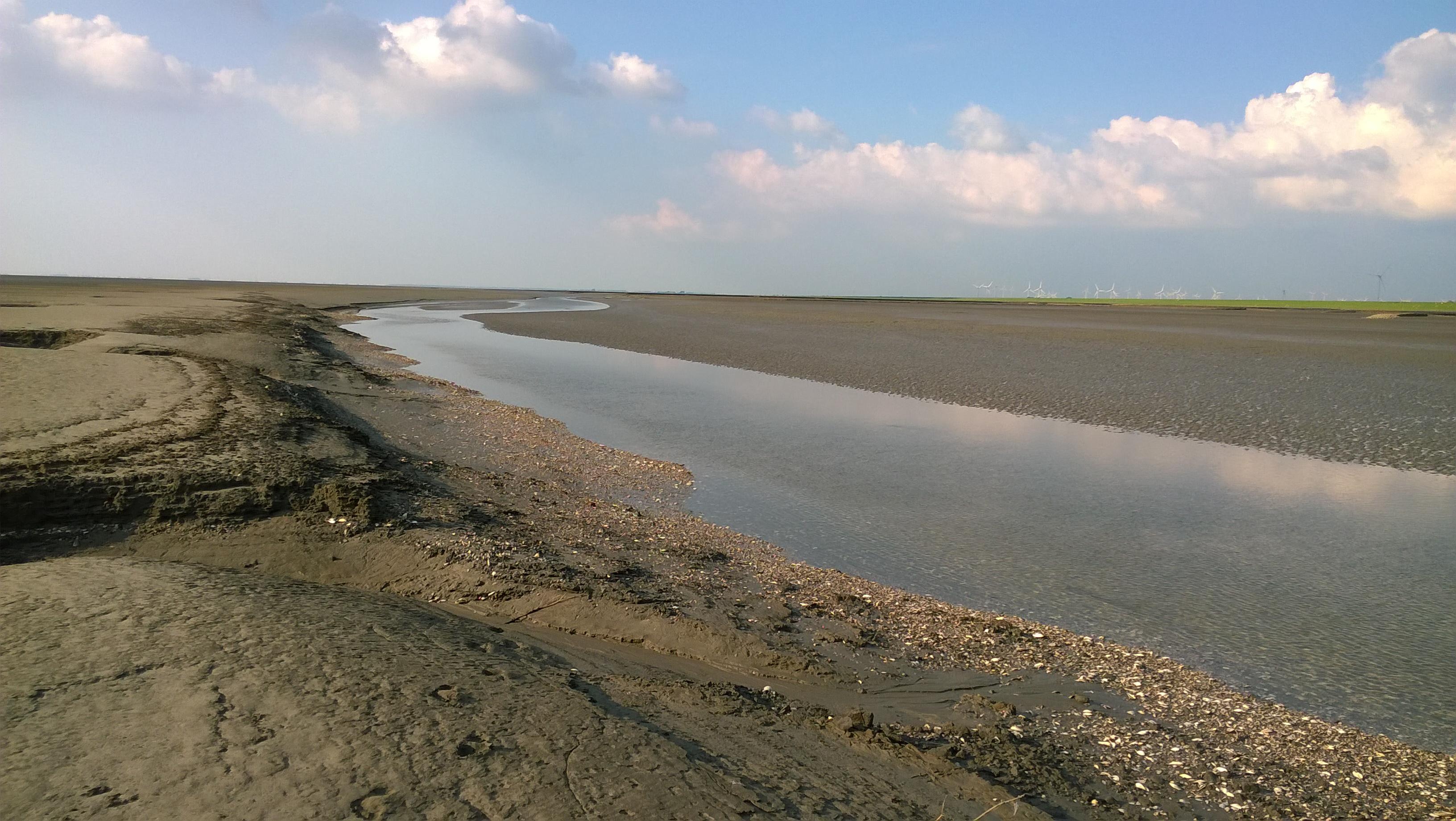 Photo: Westerkoog Priel bei Niedrigwasser