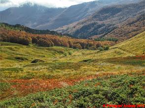 Photo: IMG_4061 i colori dell autunno sull appennino reggiano dall cresta nord del Cipolla