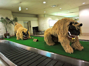 Photo: Lions guard the baggage claim at Naha Airport.