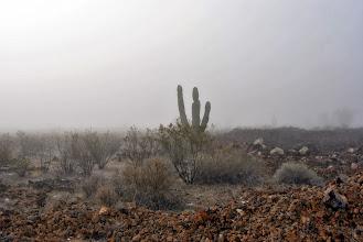 Photo: nebbia nel deserto? sul serio?