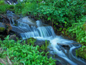 Photo: A small fall in a spring stream. Sequoia National Park, California #WaterfallWednesday