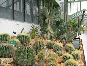 Photo: Short stop at La Jardin De Plantes