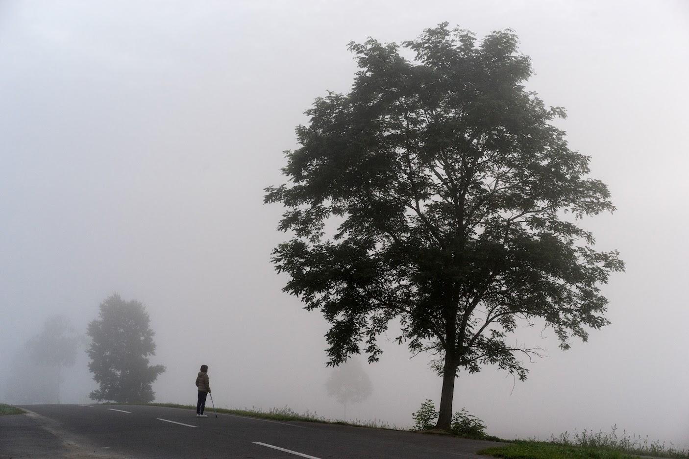 朝霧(ひまわりの里)