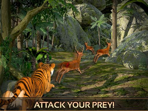 野生虎的冒險