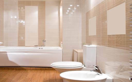 Bathroom Design - Home Design
