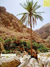 Photo: Wadi Shab Oman