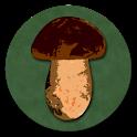 Book of Mushrooms icon
