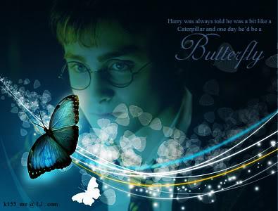 http://img.photobucket.com/albums/v475/k155_me/ButterflyPic.jpg