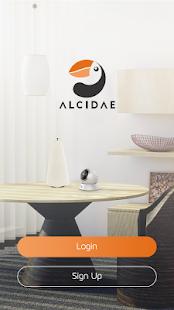 Alcidae - náhled