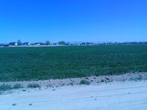 Photo: Subdivisions in Caldwell with fields in between. Photo from part of my longer walks.