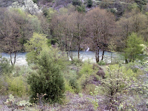 Photo: The gorge collects the waters of a number of small rivers and leads them into the Voidomatis River which rises in the gorge