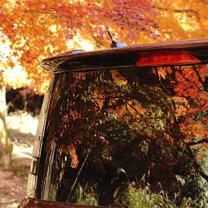 シエンタ NCP81Gのカスタム事例画像 N美さんの2020年11月12日16:01の投稿
