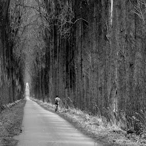 on the bike by Hilda van der Lee - Black & White Landscapes ( december, bike, girl, nature, black and white, trees,  )