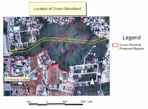 Photo: Map of Ironwood Forest (before Dec.2002),  showing Crown Property, wetlands and proposed road. Current Google map of Ironwood Forest, SE of George Town, Grand Cayman: https://maps.google.com/maps?q=grand+cayman&hl=en&ll=19.280978,-81.381569&spn=0.006613,0.009602&hnear=Grand+Cayman&t=h&vpsrc=6&z=17 Community College is now University College of the Cayman Islands