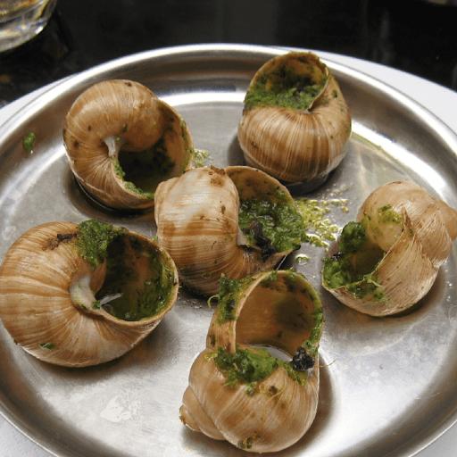 fermette aux escargots romont