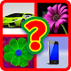 Download Find Me - 4 pics 1 Word For PC Windows and Mac